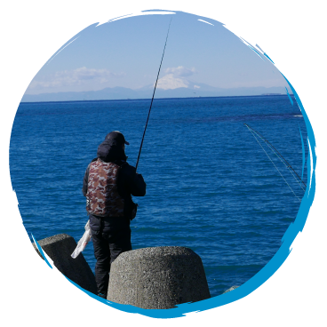 富浦旧港の釣り